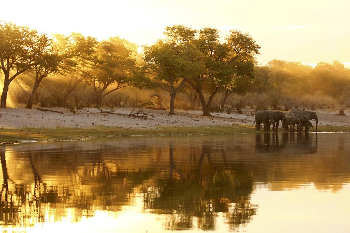 Impressions de voyage de Sophie & Rodolphe, Auto-tour Namibie, Botswana, Zimbabwe – Septembre 2019