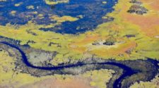 index5_Okavango_skyview