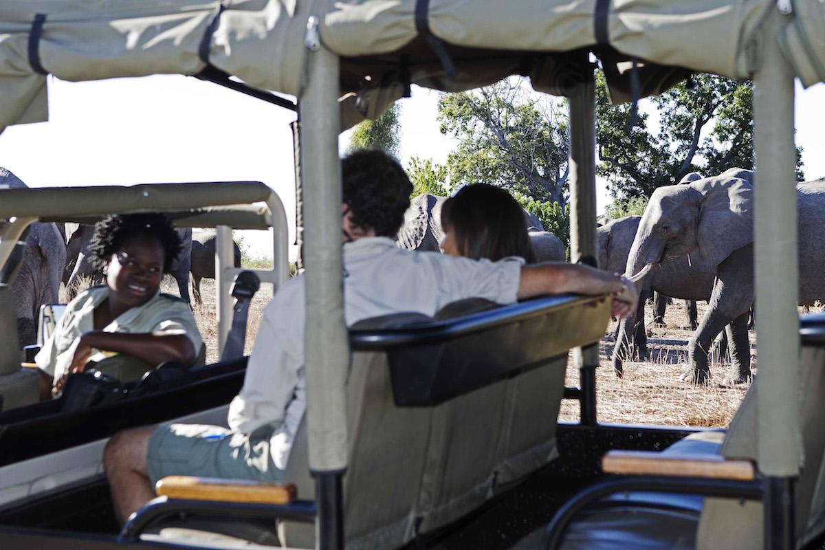 Impressions de voyage de d'Alain & sa famille, Auto-tour Botswana – Juillet 2019