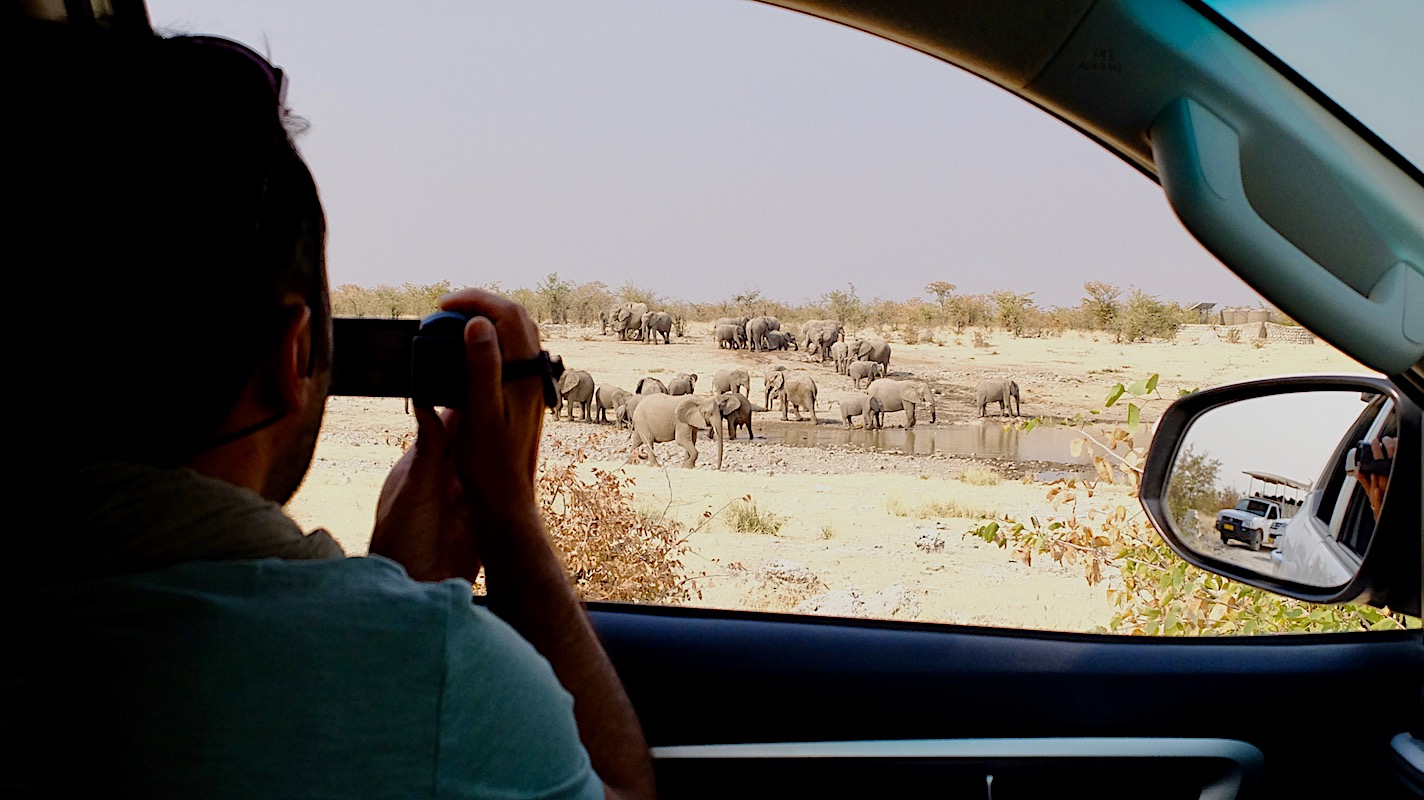 Impressions de voyage de Julie & sa Famille, Auto-tour Namibie, Avril 2019