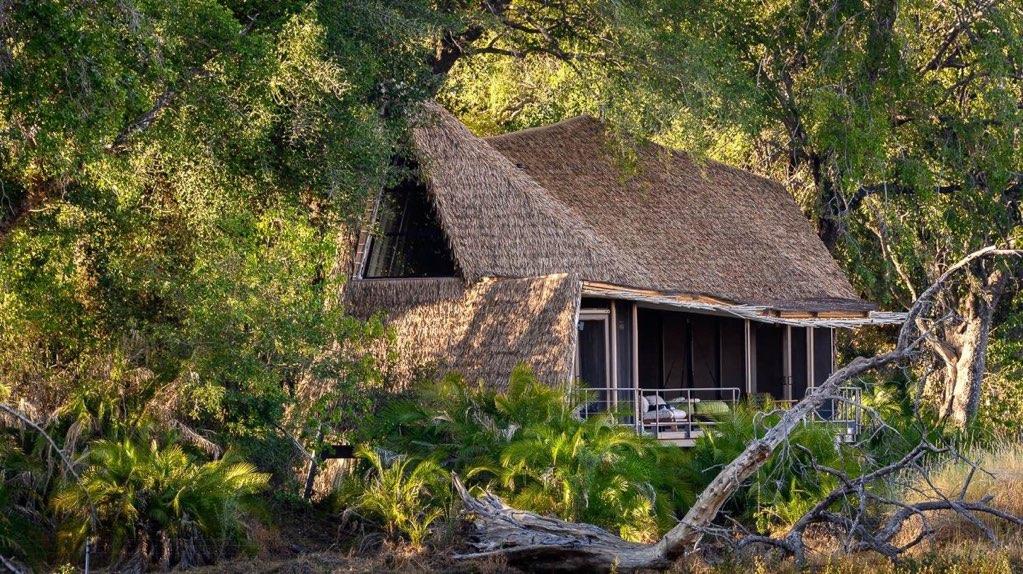 Okavango | Duba Jao & alentours